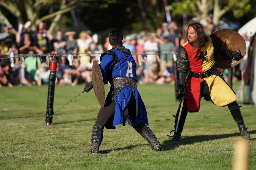 Knights of Mayhem - Sir Hector and Sir Avery fight on the field